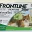 Frontline Plus for Cat สำหรับแมว 2 เดือนขึ้นไป บรรจุ 3 หลอด ( 1 box ) Exp.03/19 thumbnail 1